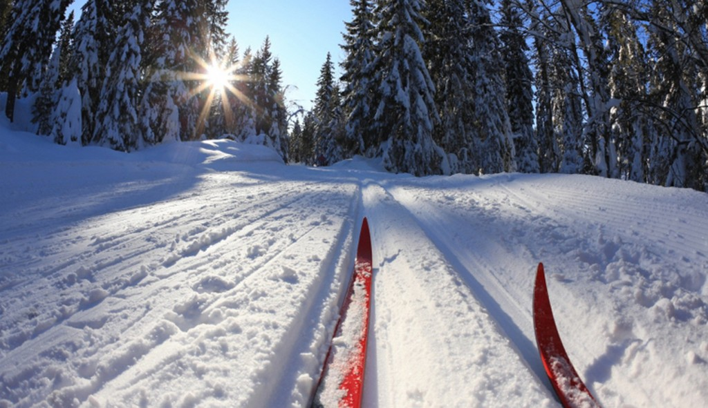 беговые лыжи-2_0